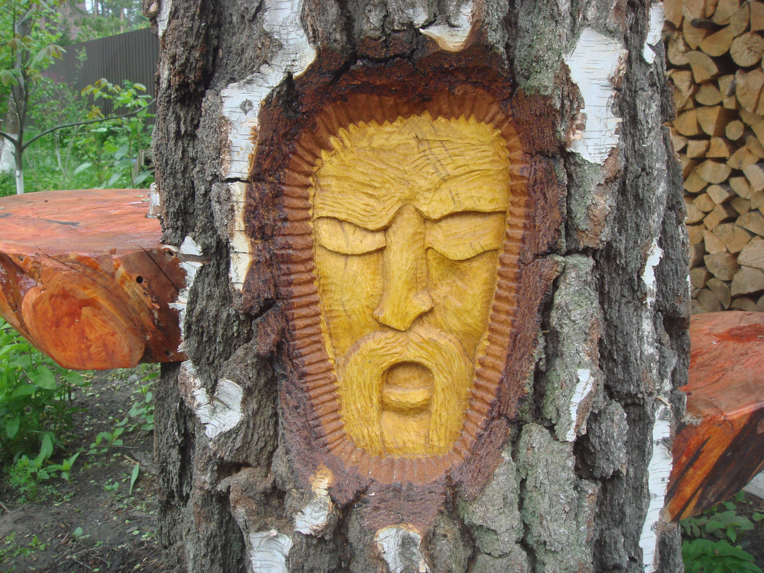 Деревянное лицо человека из основания дерева