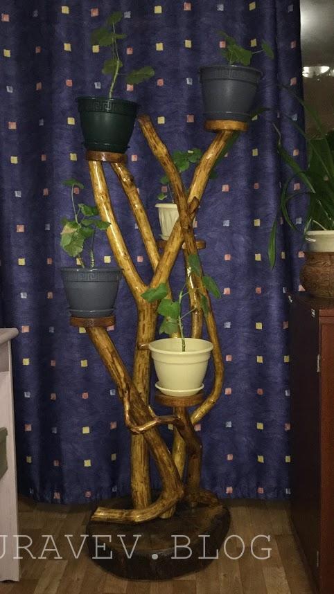 Подставка для цветов из корня дерева своими руками фото